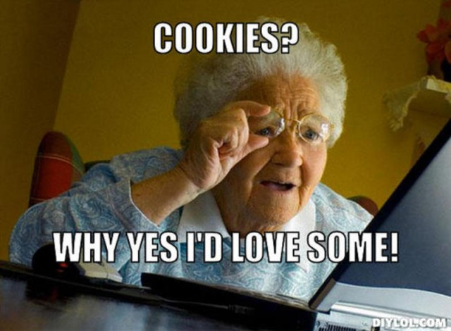resized_grandma-finds-the-internet-meme-generator-cookies-why-yes-i-d-love-some-395e3b
